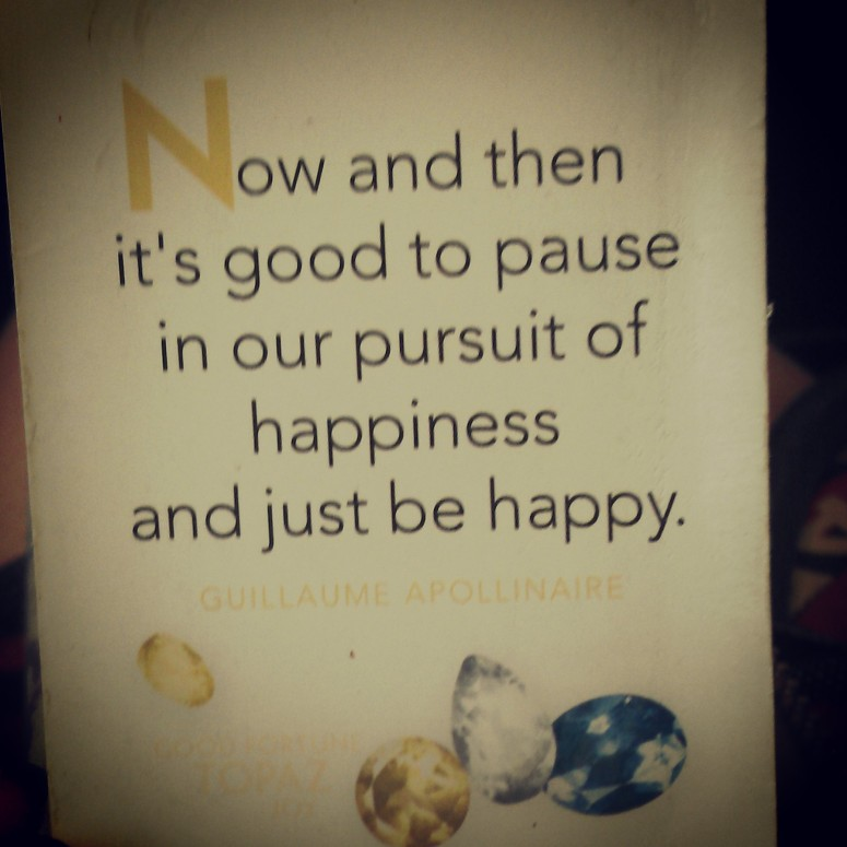 Now and then it's good to pause in our pursuit of happiness and just be happy - Guillaume Apollinaire